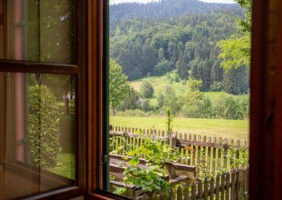 Seminarraum 3 / Fensteraussicht